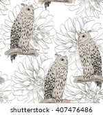 vector sketch of a owl with...