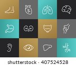 set of modern vector body parts ...   Shutterstock .eps vector #407524528