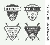 set of vintage karate or... | Shutterstock .eps vector #407540152