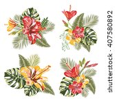 Vector Tropical Flower. Set...