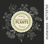 vector background with herbs in ... | Shutterstock .eps vector #407725762