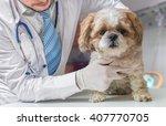 Stock photo veterinarian doctor is examining dog in veterinary 407770705