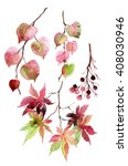 Watercolor Autumn Leaves ...