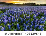 beautiful bluebonnets field at... | Shutterstock . vector #408129646