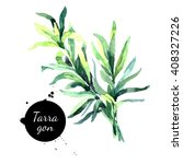 watercolor hand drawn tarragon. ... | Shutterstock . vector #408327226