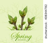 three spring twigs with buds... | Shutterstock .eps vector #408344782
