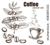 hand drawn vintage coffee plant.... | Shutterstock .eps vector #408385102