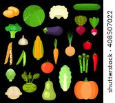 healthful vegetables with... | Shutterstock .eps vector #408507022