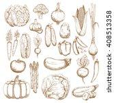 tomato  carrots  onion ... | Shutterstock .eps vector #408513358
