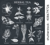 botanical collection of hand... | Shutterstock .eps vector #408679726
