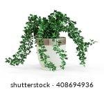 green ivy potted in flowerpot... | Shutterstock . vector #408694936