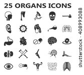 organs set 25 black simple... | Shutterstock . vector #408993088