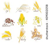 cereals icon set with rye rice... | Shutterstock .eps vector #409002058