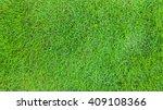 green grass texture pattern...   Shutterstock . vector #409108366