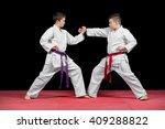 two boys in white kimono... | Shutterstock . vector #409288822