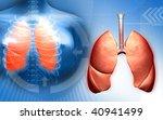 digital illustration of a human ...   Shutterstock . vector #40941499