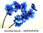 orchid blue beautiful flower... | Shutterstock . vector #409449496