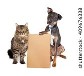 Stock photo cat and dog together holding blank cardboard sign to enter your message onto 409676338
