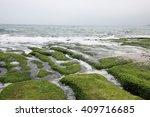 green rocky on the shore   Shutterstock . vector #409716685