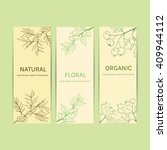 collection herbal banner with... | Shutterstock .eps vector #409944112