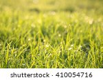green grass background bokeh... | Shutterstock . vector #410054716