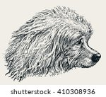 head of the poodle | Shutterstock .eps vector #410308936
