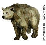 bear hand painted watercolor... | Shutterstock . vector #410379808