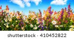 colorful spring flowers on a... | Shutterstock . vector #410452822
