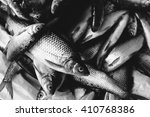 many fish caught in the market. ... | Shutterstock . vector #410768386