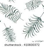 tropical silk palm plant... | Shutterstock . vector #410830372
