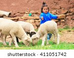 Little Latin Girl With Sheep