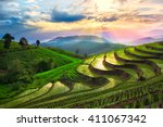 Terraced Rice Paddy Field In...