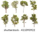 collection of isolated tree on... | Shutterstock . vector #411093922