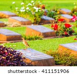 cemetery. alone in the cemetery. | Shutterstock . vector #411151906