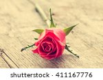 Single Pink Rose Lying On The...