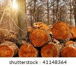 log  tree  wood | Shutterstock . vector #41148364