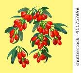 composition of goji berries | Shutterstock .eps vector #411757696