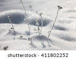 Natural Winter Background With...