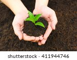 hands holding young plant. | Shutterstock . vector #411944746