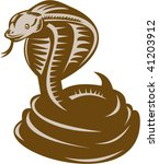 illustration of a king cobra coiled about to strike