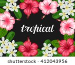 background with tropical... | Shutterstock .eps vector #412043956