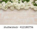 flowers | Shutterstock . vector #412180756