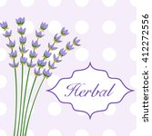 bouquet of violet lavender | Shutterstock .eps vector #412272556