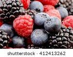 fresh ripe berries. blueberry  ... | Shutterstock . vector #412413262