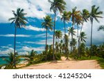 palm grove on the shore of the... | Shutterstock . vector #41245204