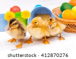 Small Ducklings With Easter Eggs