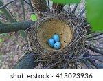 bird nest with blue eggs ... | Shutterstock . vector #413023936
