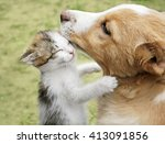 Stock photo kitten hugging puppy selective focus 413091856