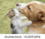Kitten Hugging Puppy. Selectiv...