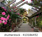 Stock photo rose garden in bloom stanley park vancouver british columbia canada 413186452
